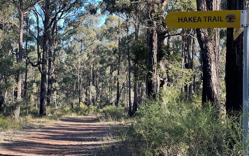 Hakea trail