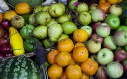 Sciberras Fresh Fruit & Vegetables