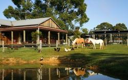 Tobruk Sydney Farmstay