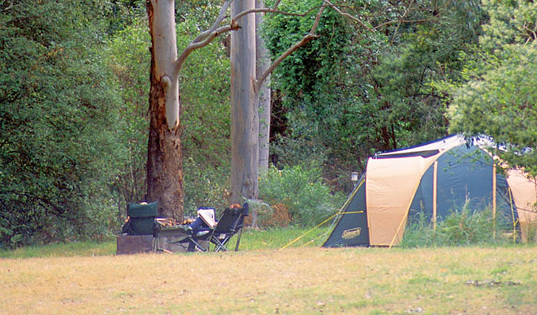 Wheeny Creek Camping Area - Wollemi National Park