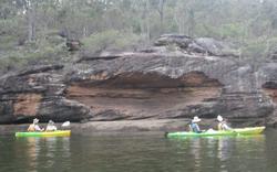 Southern Cross Kayaking Tours