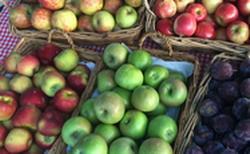 Enniskillen Orchard
