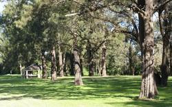 Cattai National Park